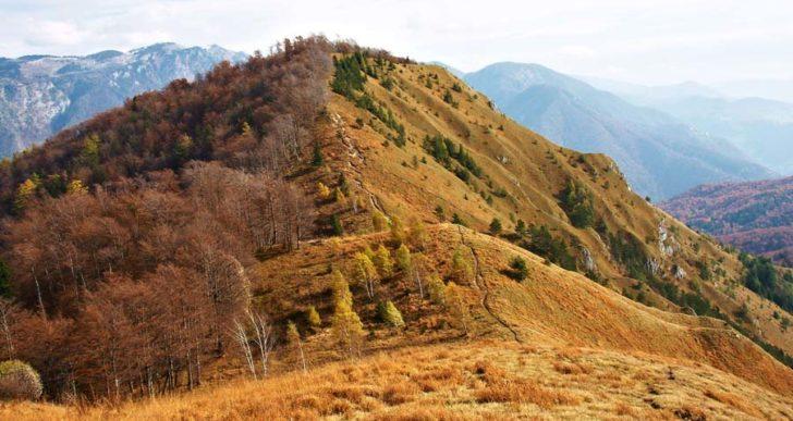 Izlet na Kamniški vrh (1259m)